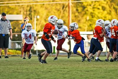 2009 10 20_CardinalsVSBroncos_0042_edited-1