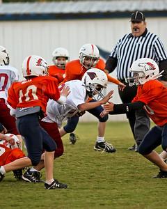 2009 10 20_CardinalsVSBroncos_0086_edited-1