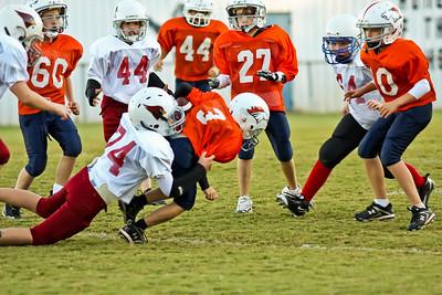2009 10 20_CardinalsVSBroncos_0047_edited-1