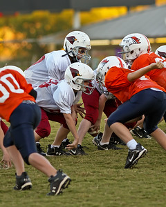 2009 10 20_CardinalsVSBroncos_0067_edited-1