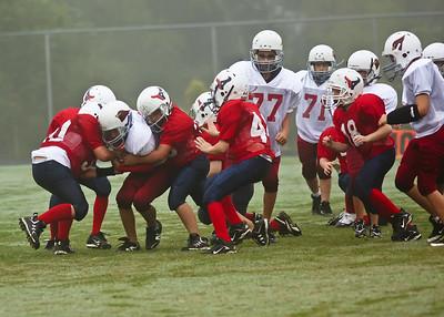 2009 09 12_CardinalsVSTexans_0029_edited-1