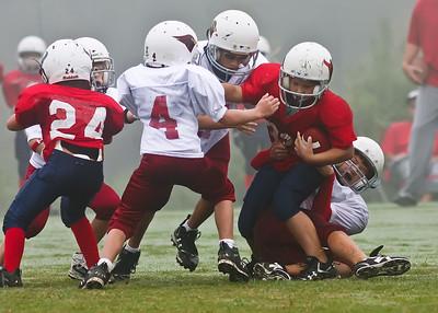 2009 09 12_CardinalsVSTexans_0012_edited-1