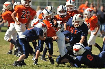 20100925 9118  WFFL 12-00pm, Mitey Mite,  Mtn. Crest White  @ Mtn. Crest Orange  (North)_
