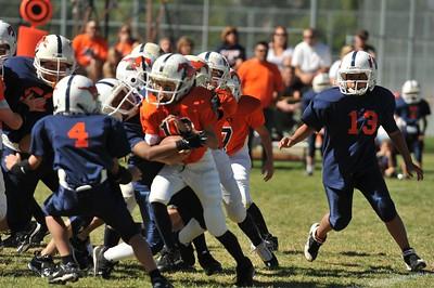 20100925 9114  WFFL 12-00pm, Mitey Mite,  Mtn. Crest White  @ Mtn. Crest Orange  (North)_
