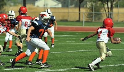 20100925 0103  WFFL Mighty Mite Blue MC Stadium