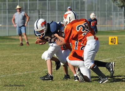 20100925 8214  2010-09-25 WFFL  Jr. Pee Wee, Mtn. Crest White  @ Mtn. Crest Blue (Bowler)