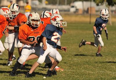 20100925 8146  2010-09-25 WFFL  Jr. Pee Wee, Mtn. Crest White  @ Mtn. Crest Blue (Bowler)