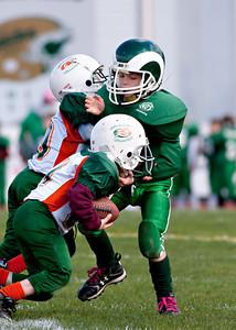 Rams football 103110-5 copy