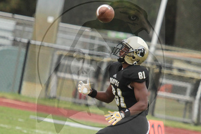 UNCP plays Newberry on Saturday, October 27th, 2012. print_newberry_0446.jpg