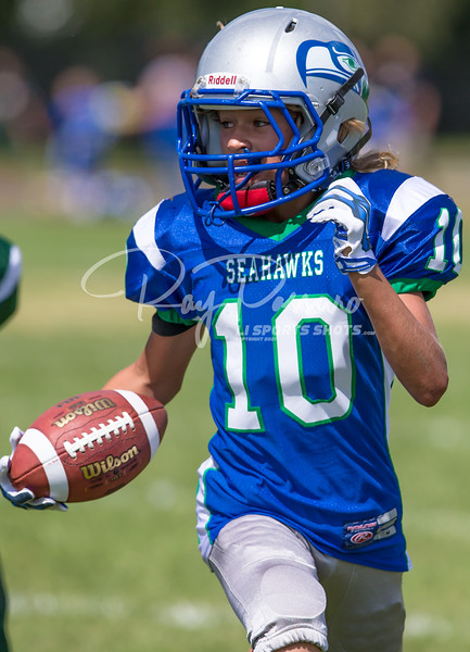 2014 Youth Football