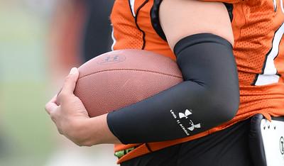 GB1_3921 20150530 183917 Football Utah Shock at Logan Stampede
