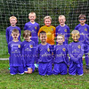 Brierley Cubs Under 7's