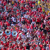 Pep Band and Georgia Fans