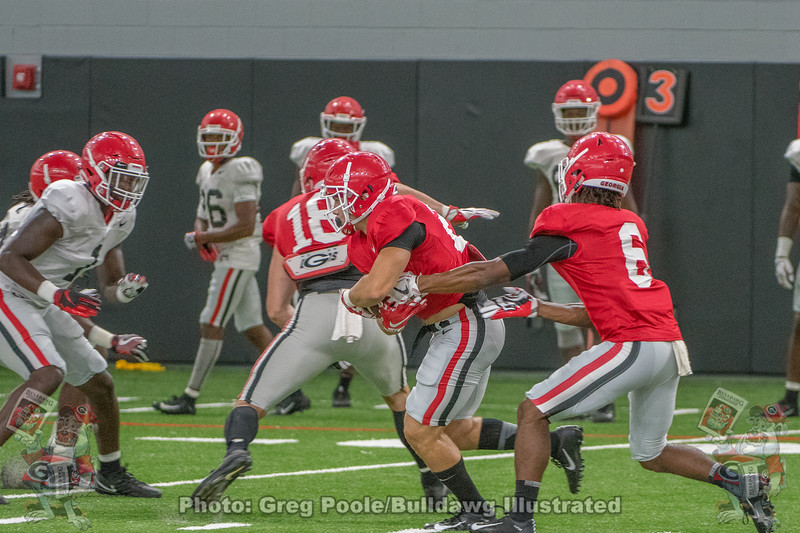 James Cook (6) runs the wild dawg