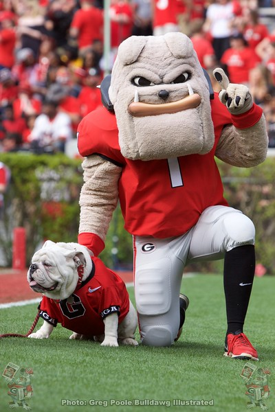 Hairy Dawg & Uga X