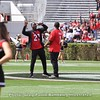 Sony Michel and Nick Chubb call the Dawgs