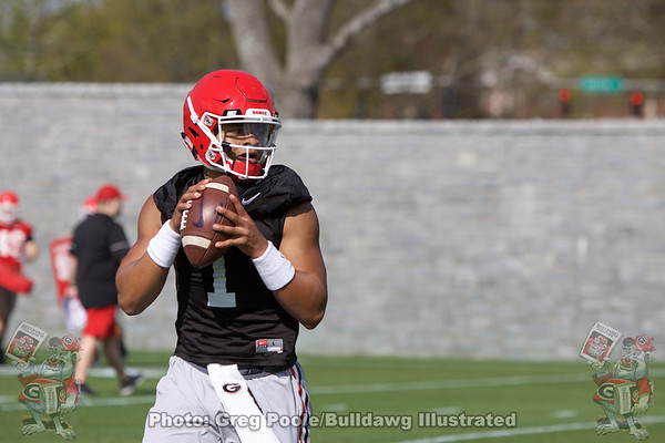 Justin Fields Gallery