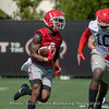 Mecole Hardman (4) and Malik Herring (10)