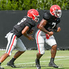 Nathan Priestley (9) and D'Andre Swift (7)