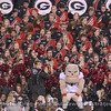 Redcoat Band and Hairy Dawg