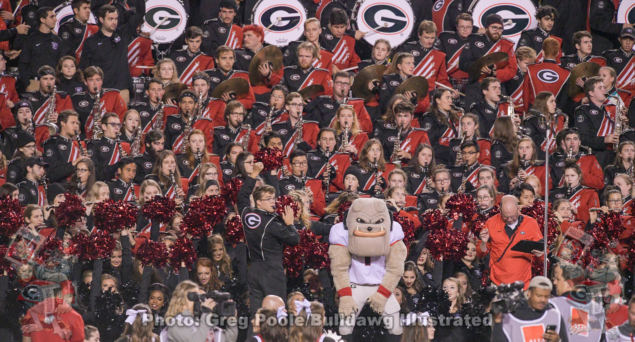 Redcoat Band and Hairy Dawg, Georgia vs. Auburn, Saturday, November 16, 2019