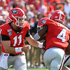 Jake Fromm (11) hands off to James Cook (4)
