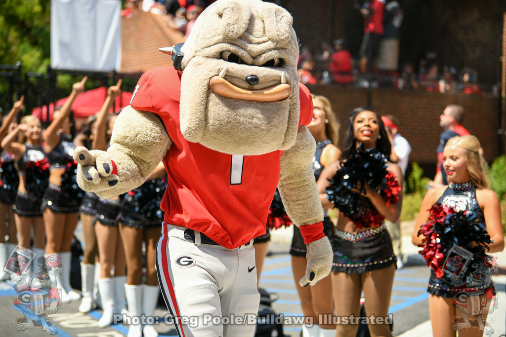 Hairy Dawg during the UGA vs. Murray State Dawg Walk, Saturday, Sept. 7, 2019