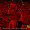 "Hairy Dawg gets his groove on during the 4th-quarter of the Notre Dame game and ""light up Sanford"""