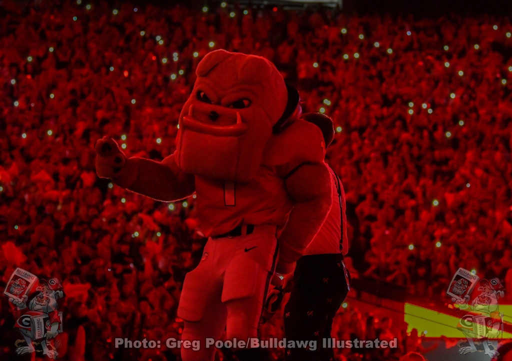 "Hairy Dawg gets his groove on during the 4th-quarter of the Notre Dame game and ""light up Sanford,"" Saturday, September 21, 2019"
