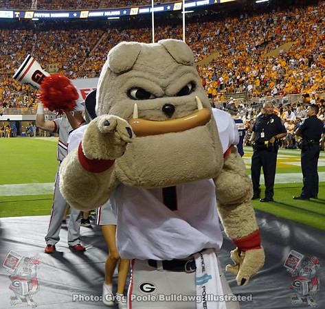 Georgia vs. Tennessee 2019 - Bob's Photos