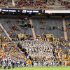 Tennessee fans disguised as seats