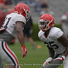 Channing Tindall (41) and Quay Walker (25)