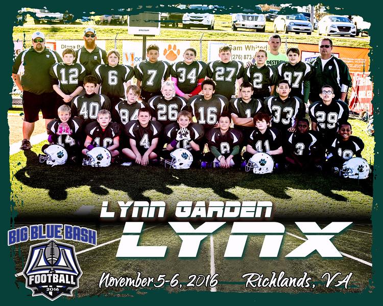 LYNX 2 A