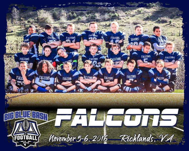Falcons 3 B