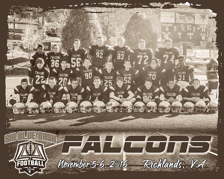 Falcons B