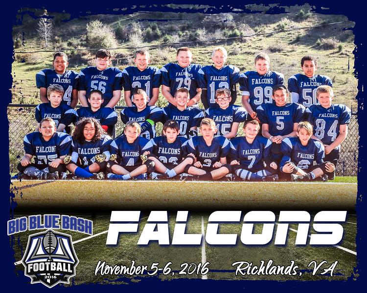 Falcons 3 A