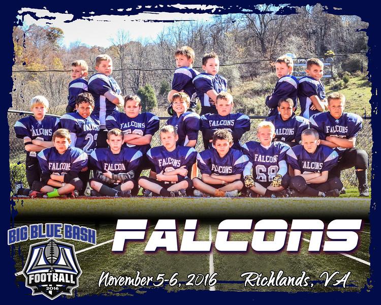 Falcons 2 B