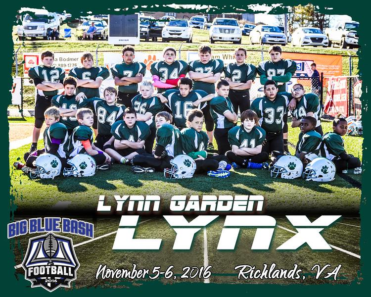 LYNX 2 B