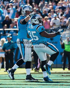 Carolina Panthers fullback Mike Tolbert (35)