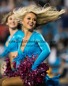 Panthers cheerleader