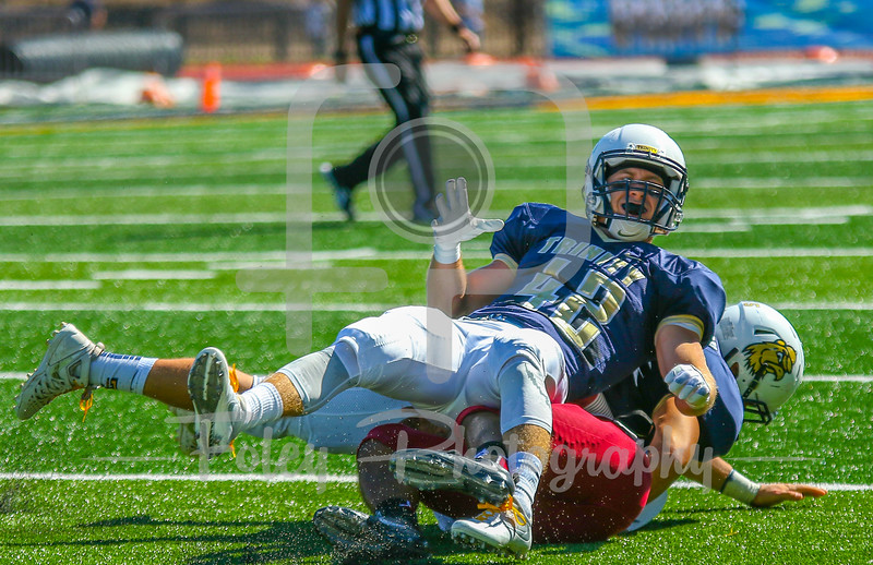 Trinity College Bantams safety Spencer Donahue (42)