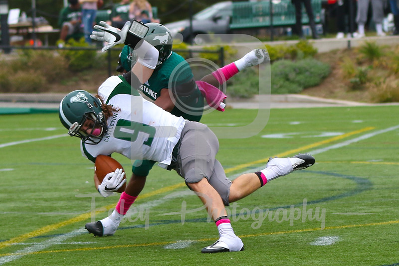 Castleton University wide receiver Anthony Porcelli (9) Mount Ida Mustangs Dwayne Hunter-Parker (24)