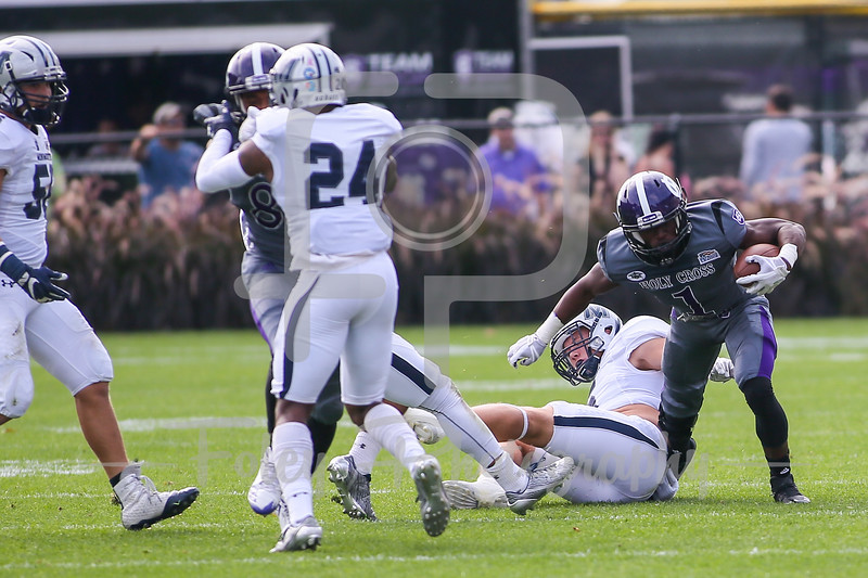 Holy Cross Crusaders running back Domenic Cozier (1)