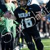 Derby Jr Panthers-7345