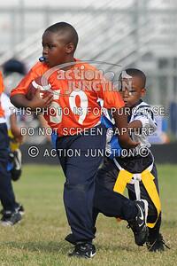 Broncos vs Panthers 051