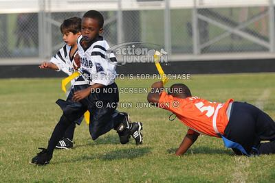 Broncos vs Panthers 035