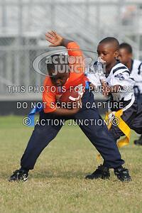Broncos vs Panthers 050