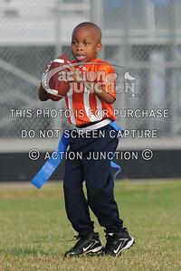 Broncos vs Panthers 041