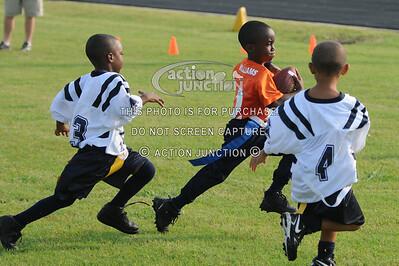 Broncos vs Panthers 030