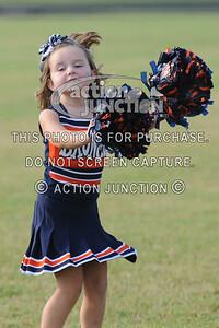 Broncos vs Panthers 003